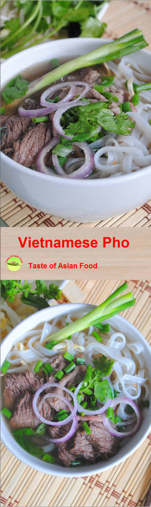 Vietnamese pho recipe pin