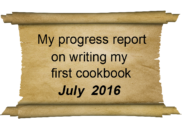 progress report july 2016