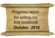 progress report October 2016