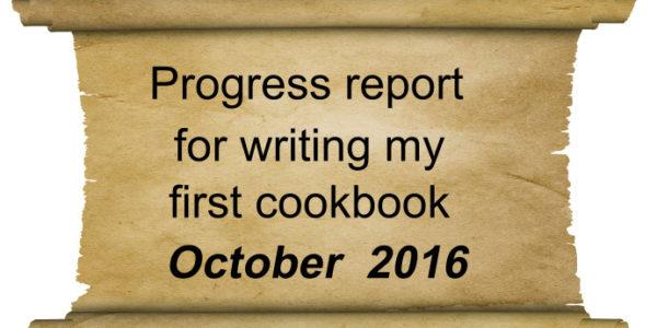 progress report October 2016