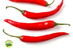 cut chili red chili