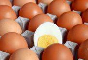 hard boiled eggs feature image
