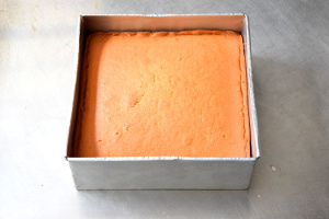 fresh butter cake