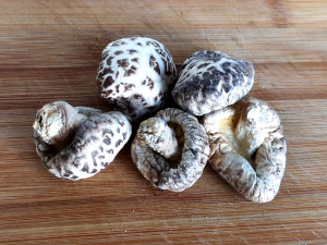 shiitake mushroom buddha's delight